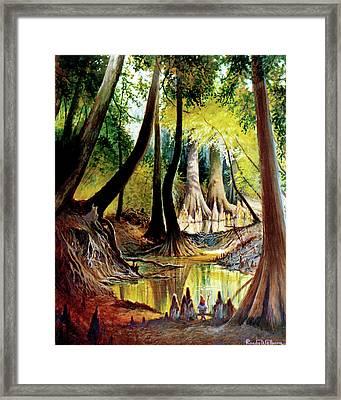 Beaver Dam On Village Creek Framed Print