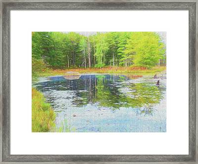 Beaver Pond Reflections Framed Print