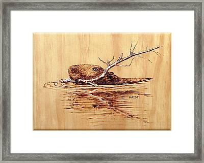 Framed Print featuring the pyrography Beaver by Ron Haist