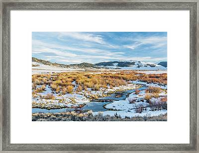 beaver swamp in Rocky Mountains Framed Print by Marek Uliasz
