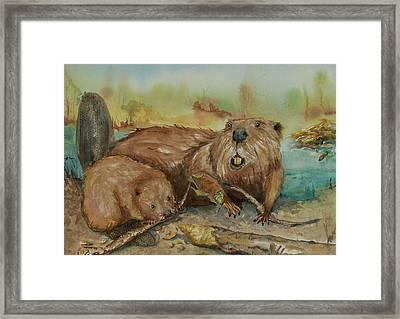 Beavers Framed Print by Barbara McGeachen