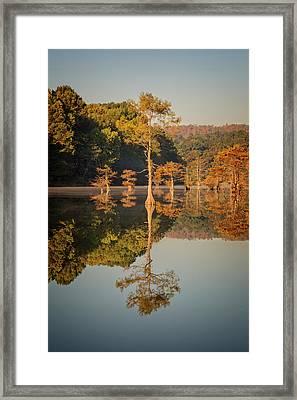 Beavers Bend Ix Framed Print by Ricky Barnard