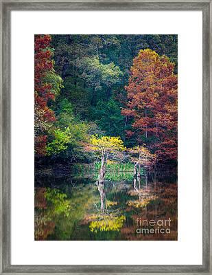 Beavers Bend Trees Framed Print by Inge Johnsson
