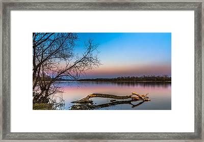 Beavers' Work Reflected Framed Print
