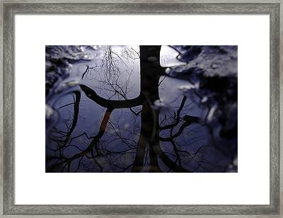 Because The Dutchman Said So Framed Print