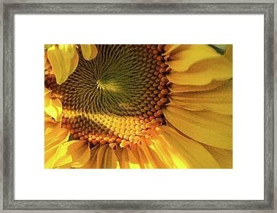 Beckon - Framed Print