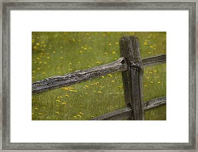 Beckoning Framed Print by Rebecca Cozart