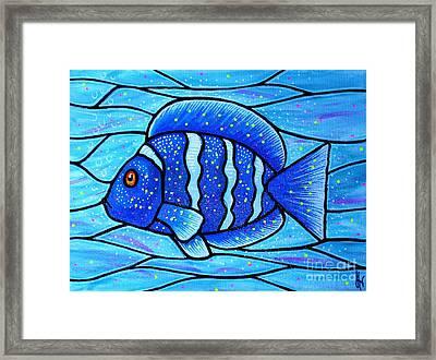 Beckys Blue Tropical Fish Framed Print by Jim Harris