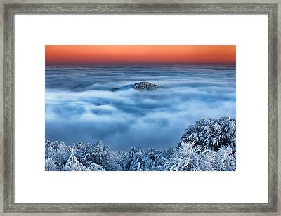 Bed Of Clouds Framed Print