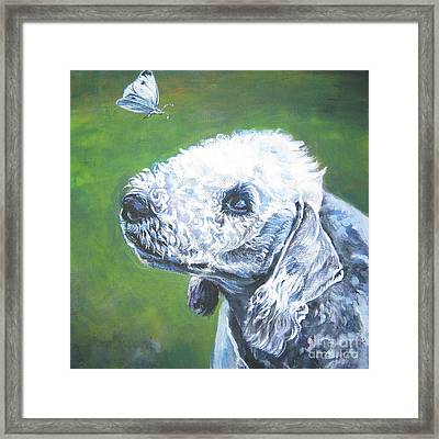 Bedlington Terrier With Butterfly Framed Print by Lee Ann Shepard