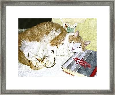Bedtime Cat Framed Print by Susan Leggett