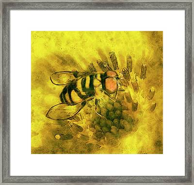 Bee Cause Framed Print by Jack Zulli