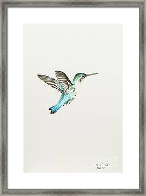 Bee Hummingbird Framed Print