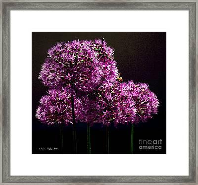 Bee I Framed Print