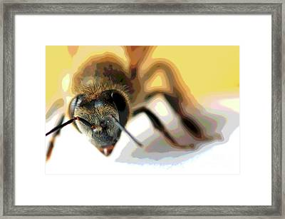 Framed Print featuring the photograph Bee In Macro 5 by Micah May