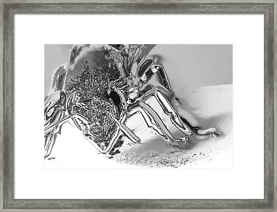 Framed Print featuring the photograph Bee In Macro Chrome by Micah May