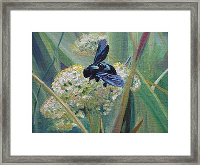 Bee In Provence Framed Print