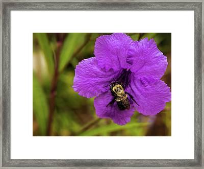 Bee Mine Framed Print by Elijah Knight