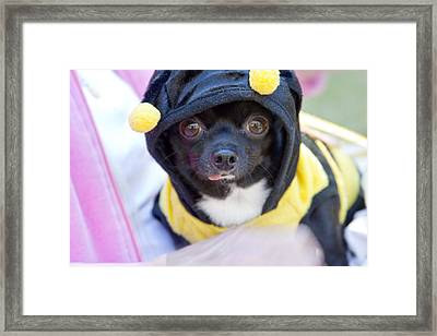 Bee Mine Framed Print by Toni Hopper