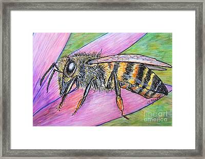 Bee On Purple Petal  Framed Print