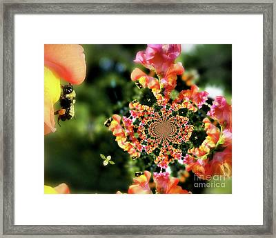 Bee On Snapdragon Flower Abstract Framed Print by Smilin Eyes  Treasures