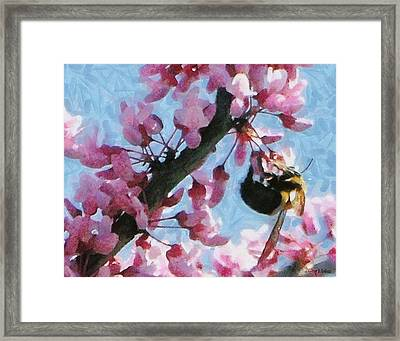 Bee To The Blossom Framed Print