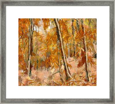 Beech Forest In Autumn Framed Print by Dragica Micki Fortuna