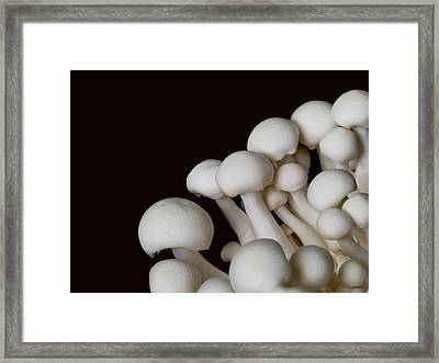 Beech Mushrooms Framed Print by Jim DeLillo