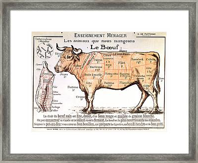 Beef Framed Print by French School