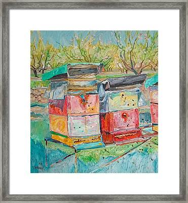 Beehives In Orchard Framed Print by Vitali Komarov