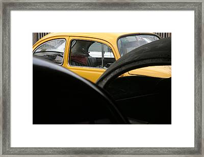 Beeked Framed Print by Jez C Self