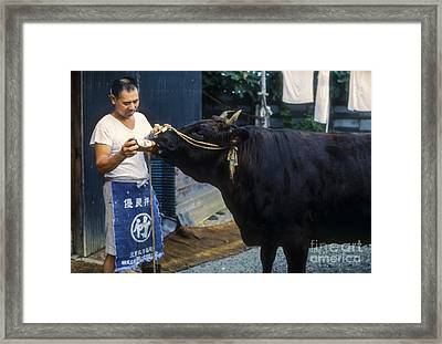 Beer Guzzler Framed Print by Bob Phillips