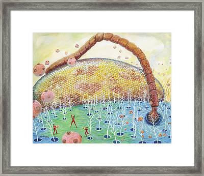 Bee's Eye And Antenna Framed Print by Shoshanah Dubiner
