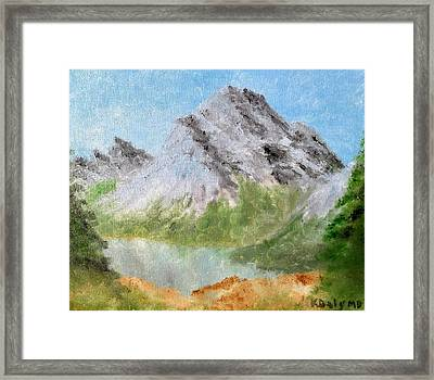 Bee's Eyed View Framed Print