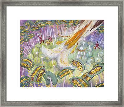 Bee's Tongue Framed Print by Shoshanah Dubiner