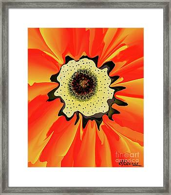 Bee'seye View Framed Print