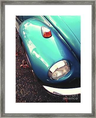 Beetle Blue Framed Print