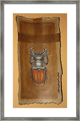 Beetle II Framed Print by Gonca Yengin