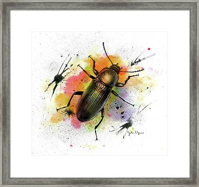 Framed Print featuring the drawing Beetle Illustration by John Dyess