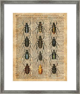 Beetles Bugs Zoology Illustration Vintage Dictionary Art Framed Print by Jacob Kuch