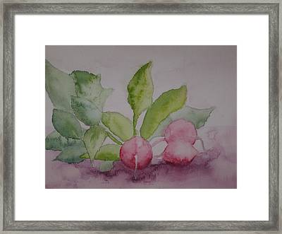 Beets Framed Print by Diana Prout