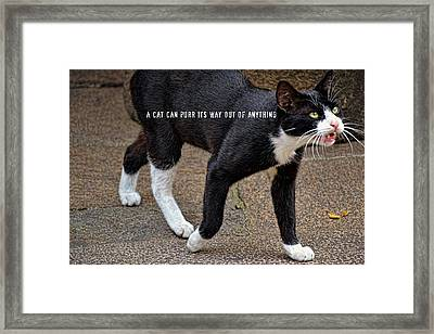 Before 3000 B.c. Quote Framed Print by JAMART Photography