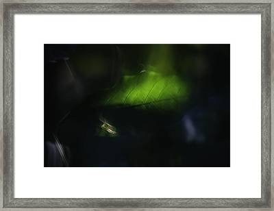 Before Darkness Falls Framed Print by Martin Morehead