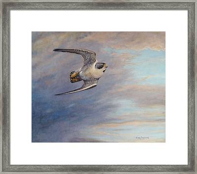 Before The Attack Framed Print by Anna Franceova