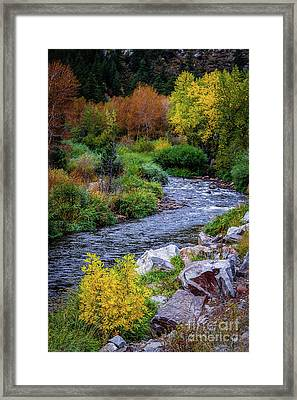 Before The Flood Framed Print by Jon Burch Photography