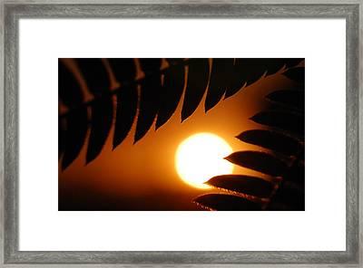 Before The Night Framed Print by Steven Milner