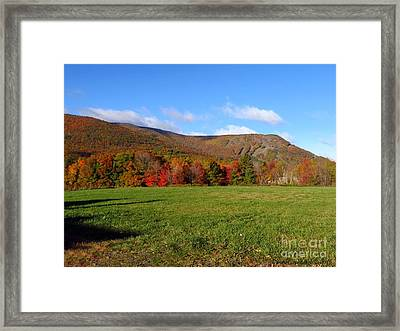 Before The Snow Flies Framed Print