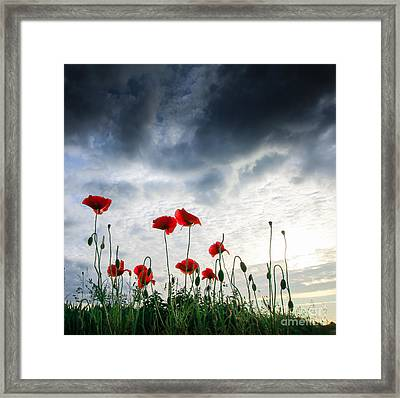 Before The Storm Framed Print by Franziskus Pfleghart