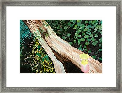 Beginning Life Framed Print by Sunhee Kim Jung