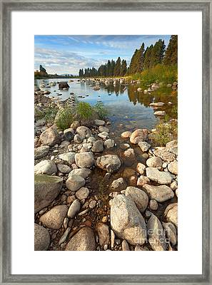 Beginnings Framed Print by Beve Brown-Clark Photography